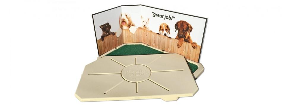 petsafe indoor dog potty