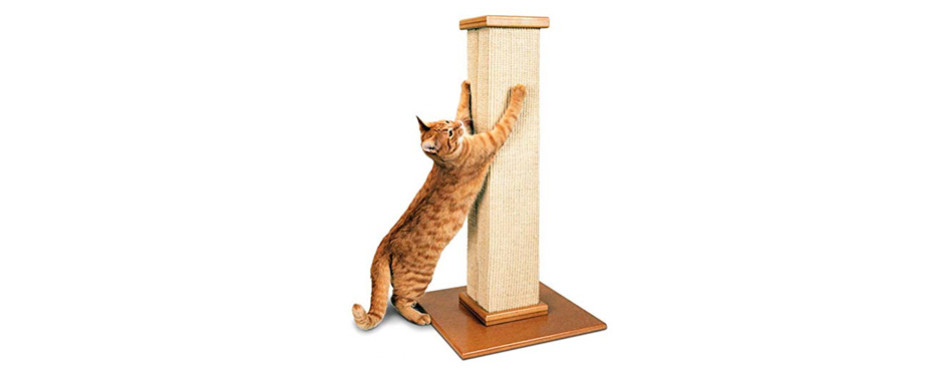 pioneer pet the ultimate cat scratching post