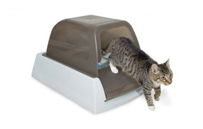 premium pick cat litter box