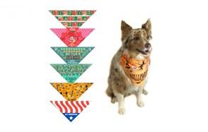 premium pick dog bandana