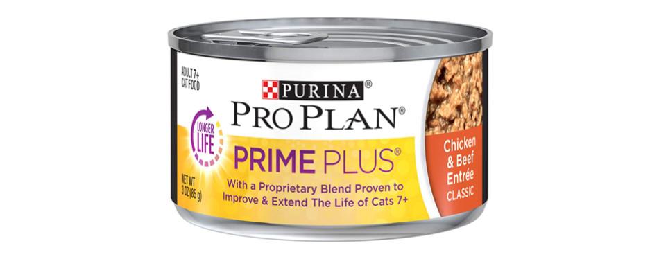 purina senior cat food