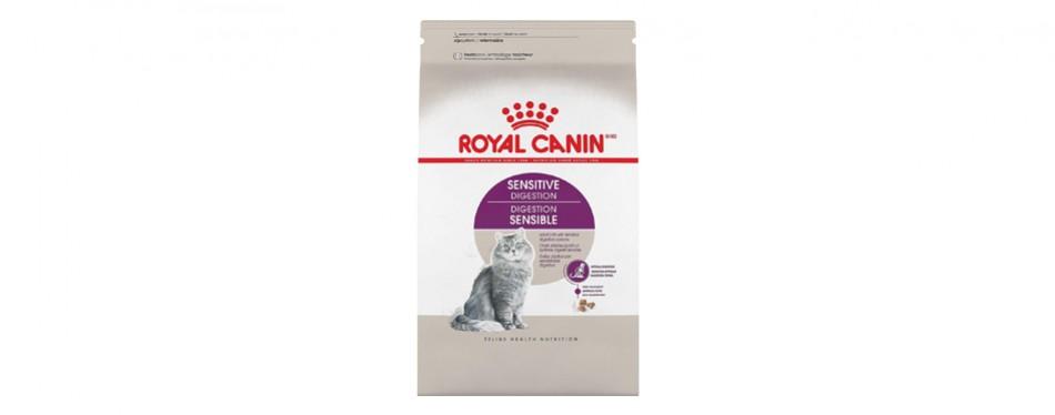royal canin feline food