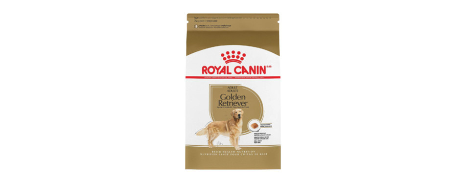 royal canin retriever food