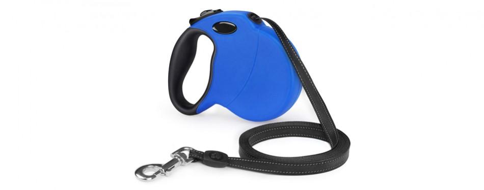 shine hai dog leash