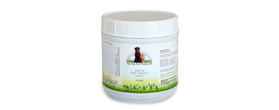 spring pet canine multi-vitamin yums