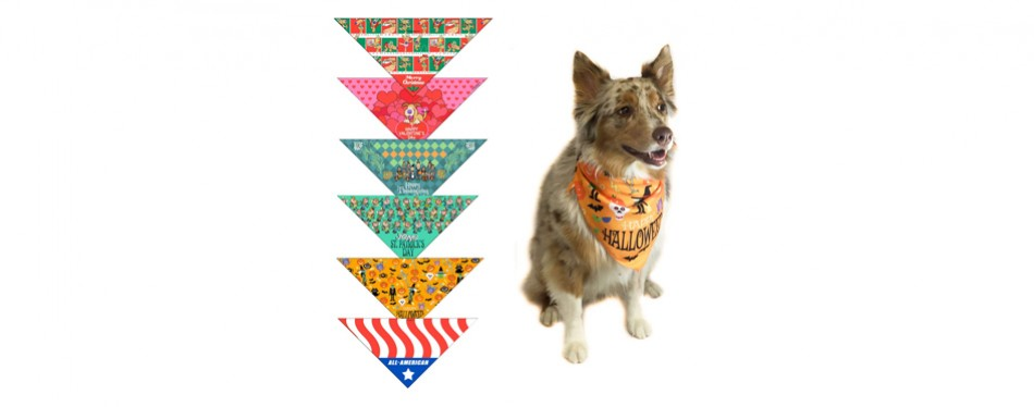 stonehouse collection dog bandana