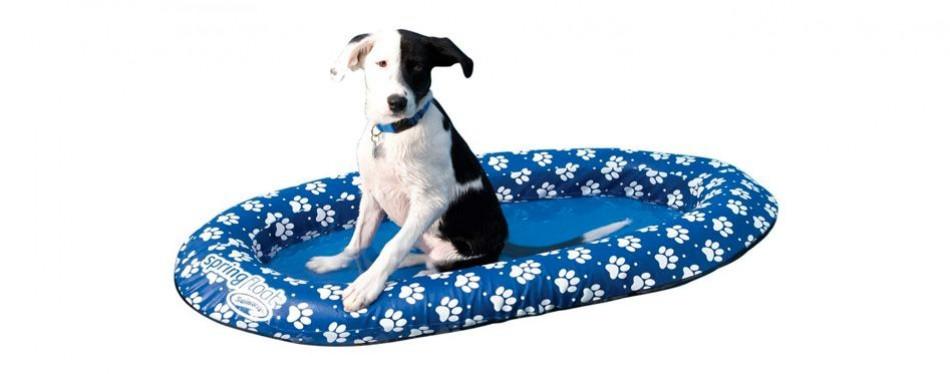 swimways spring paws dog pool float
