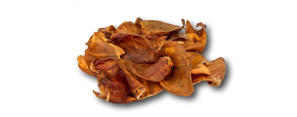 top dog chews pig ears for dogs