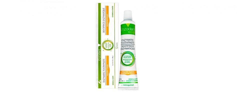 vetoquinol enzadent enzymatic cat toothpaste