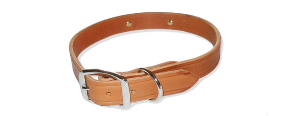 warner dog collar