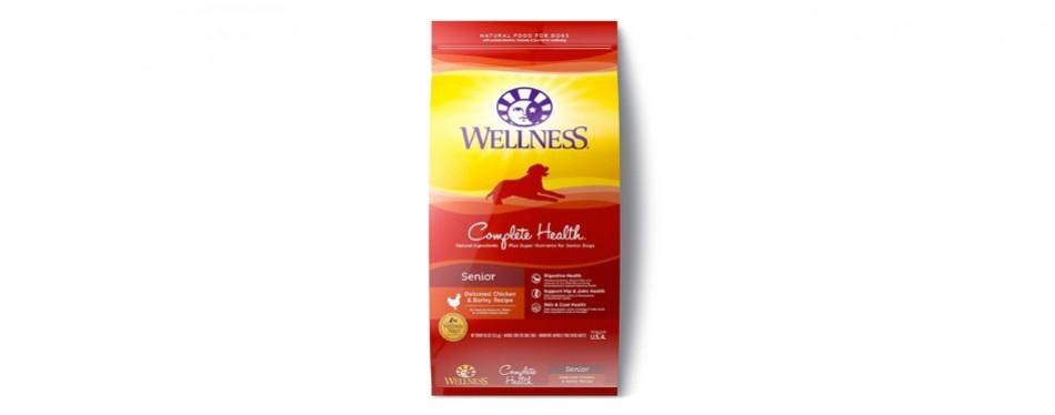 wellness complete health natural senior wet dog food