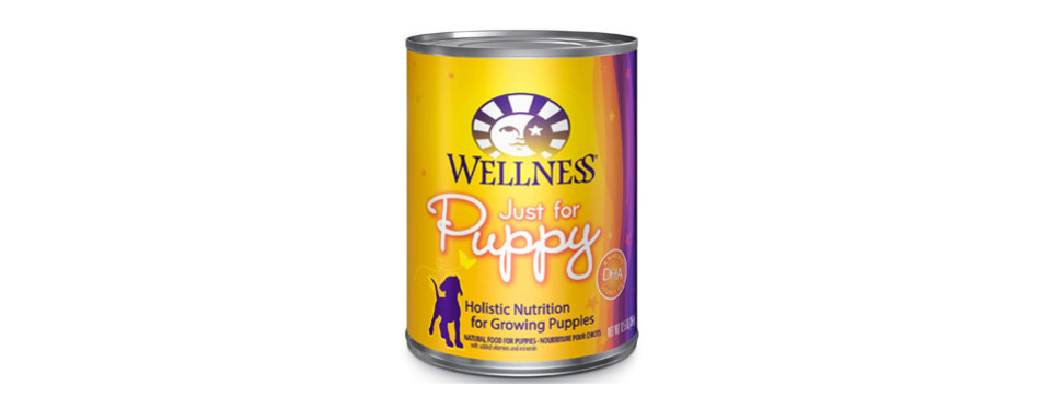 wet puppy food by Wellness Natural Pet Food