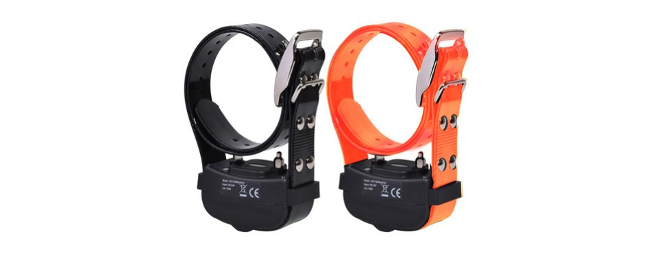 wireless combo electric dog fence system