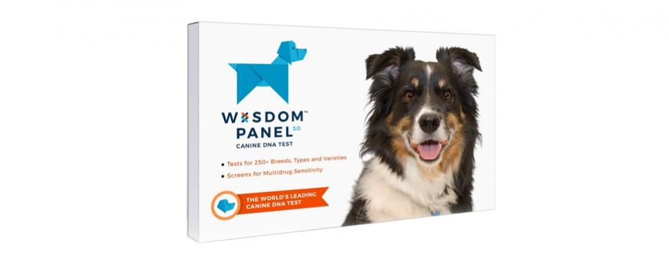 wisdom panel 3 0 dog dna test kit